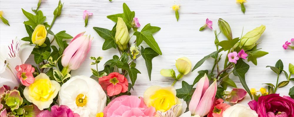 L'Isle O fleurs : 15 % de remise